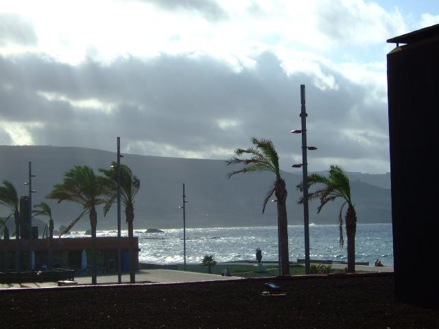 Foto de las palmas de gran canaria las palmas espa a - Fotografia las palmas ...