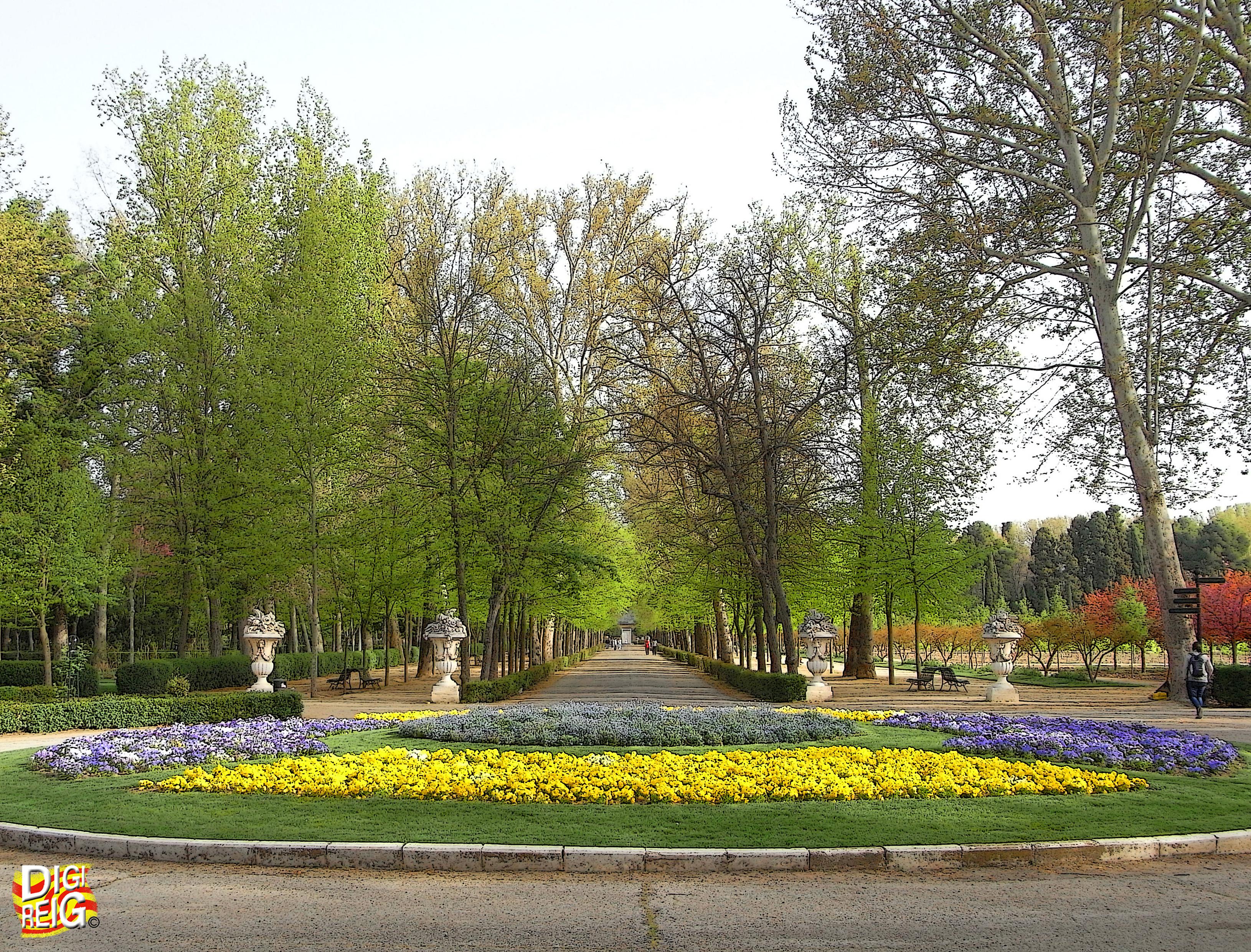 Foto jard n del pr ncipe 01 paseo aranjuez madrid espa a - Jardin del principe aranjuez ...