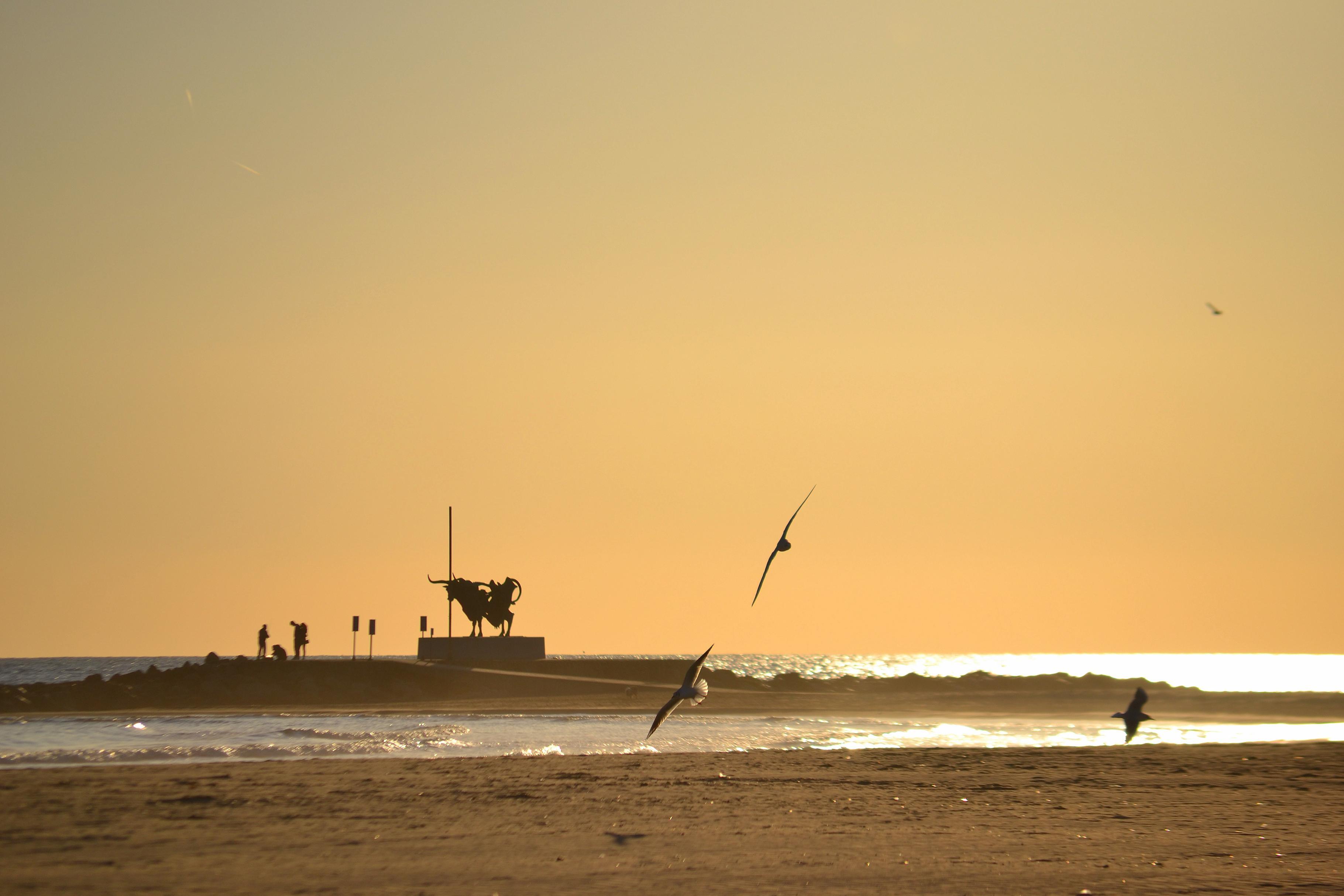 vilanova playa: