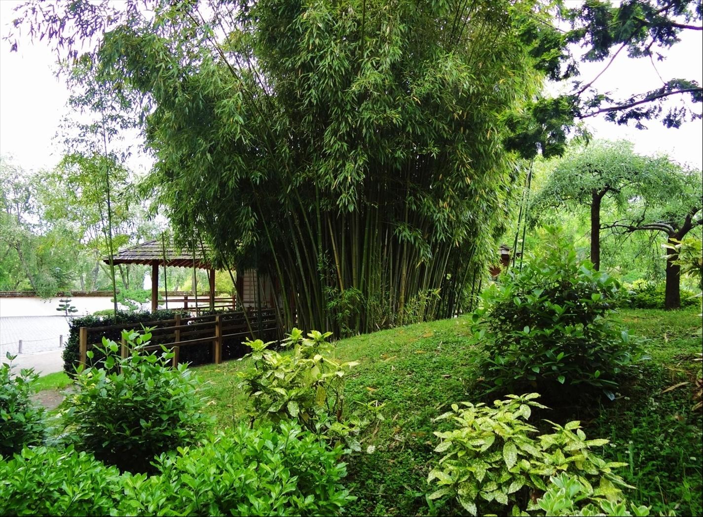 Foto jardin japonais toulouse midi pyr n es francia for Jardin japones toulouse