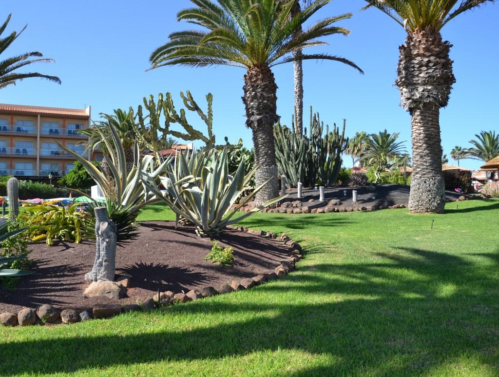 Foto caleta de fuste fuerteventura las palmas espa a - Fotografia las palmas ...