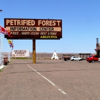 Foto de Petrified Forest, Estados Unidos