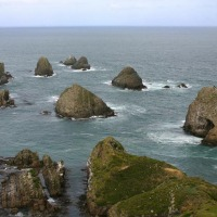 Foto de Nugget  Point., Nueva Zelanda